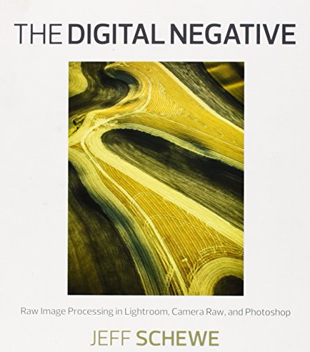 9780321839572: The Digital Negative: Raw Image Processing in Lightroom, Camera Raw, and Photoshop