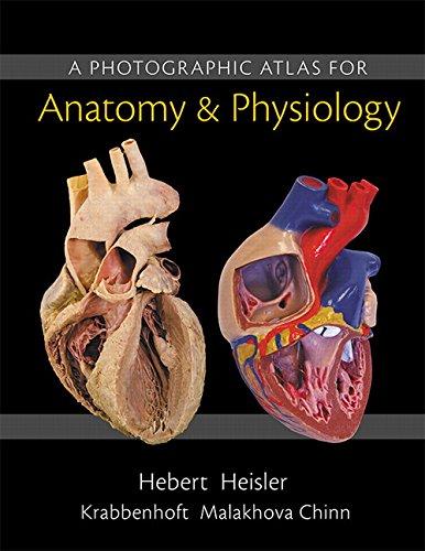 A Photographic Atlas for Anatomy & Physiology: Hebert, Nora; Heisler,