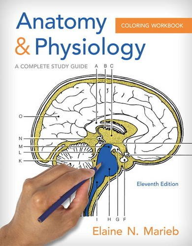 9780321960771: Anatomy and Physiology Coloring Workbook: A Complete Study Guide