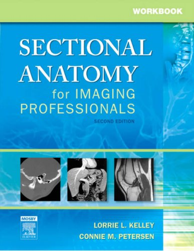 9780323020046: Workbook for Sectional Anatomy for Imaging Professionals, 2e