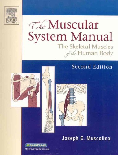 9780323034739: The Muscular System Manual - Text, Flashcards and Coloring Book Package