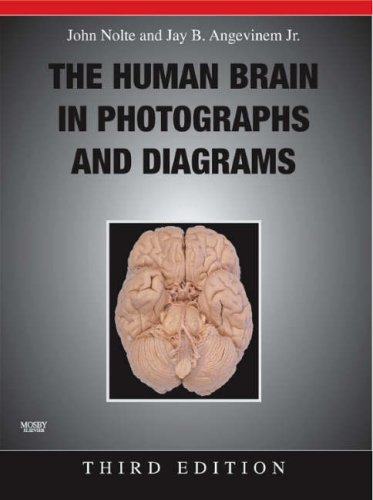 9780323045735: The Human Brain in Photographs and Diagrams with CD-ROM, 3e