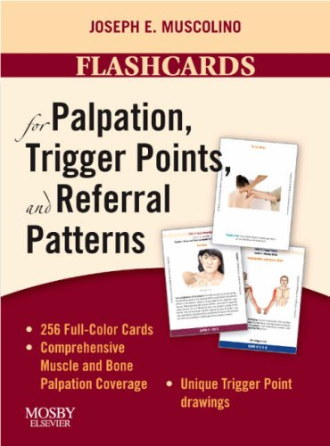 9780323051699: Flashcards for Palpation, Trigger Points, and Referral Patterns, 1e