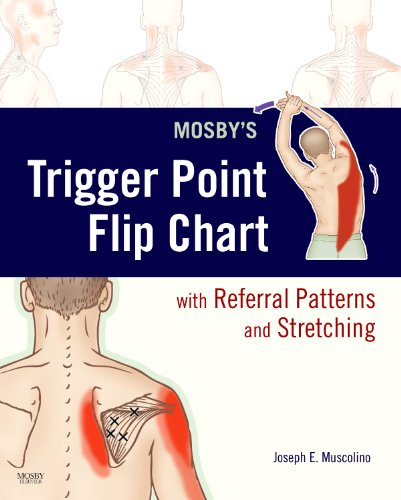 9780323051705: Mosby's Trigger Point Flip Chart with Referral Patterns and Stretching, 1e