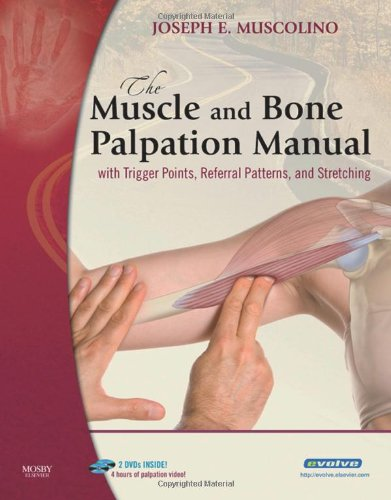 9780323051712: The Muscle and Bone Palpation Manual with Trigger Points, Referral Patterns and Stretching, 1e