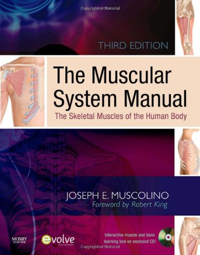 9780323057233: The Muscular System Manual: The Skeletal Muscles of the Human Body, 3e