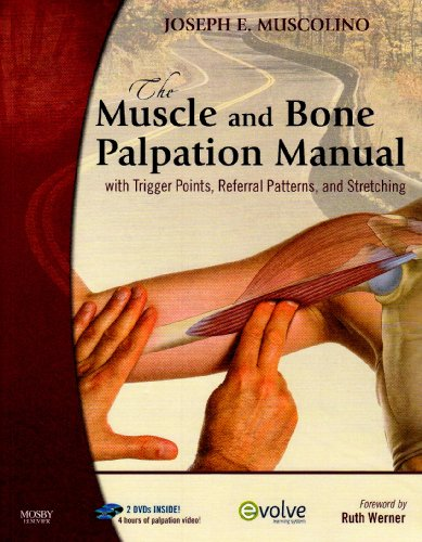 9780323065870: The Muscle and Bone Palpation Manual with Trigger Points, Referral Patterns and Stretching [With Flashcards-Palpation/Trigger Points/Referral... and 2