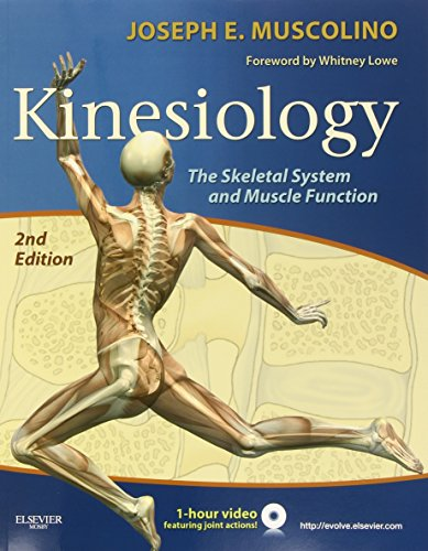 9780323069441: Kinesiology: The Skeletal System and Muscle Function, 2e