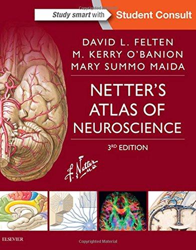 9780323265119: Netter's Atlas of Neuroscience, 3e