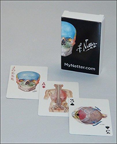 Netter Playing Cards: Netter s Anatomy Art: Frank H. Netter