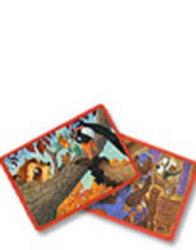 9780328304882: READING 2008 RETELLING CARDS GRADE 4