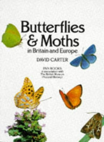9780330266420: Butterflies and Moths in Britain and Europe