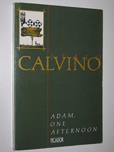 9780330283021: Adam, One Afternoon (Picador Books)