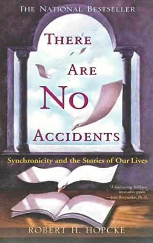 9780330367745: There Are No Accidents
