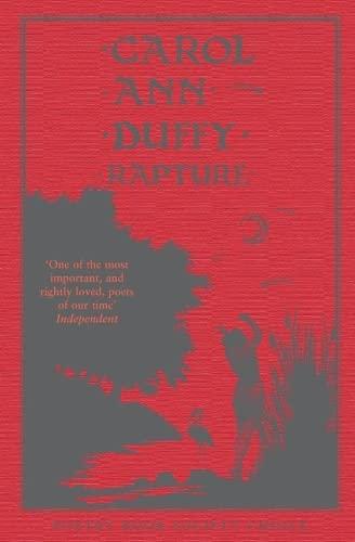 9780330412803: Rapture