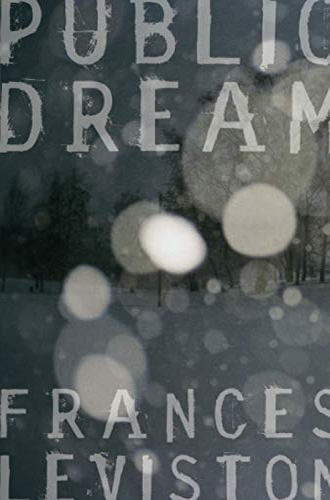 9780330440547: Public Dream