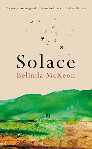 9780330532327: Solace