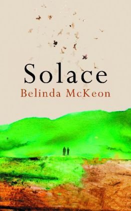9780330535595: Solace