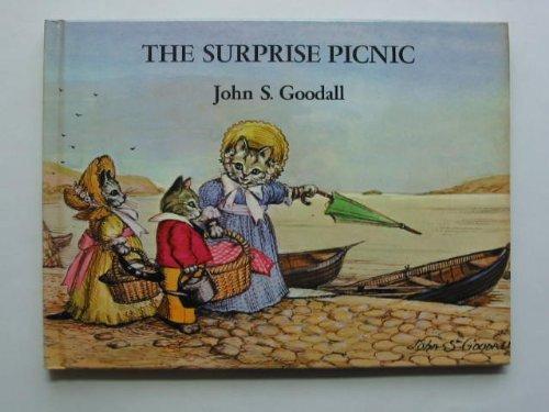 9780333216767: The Surprise Picnic