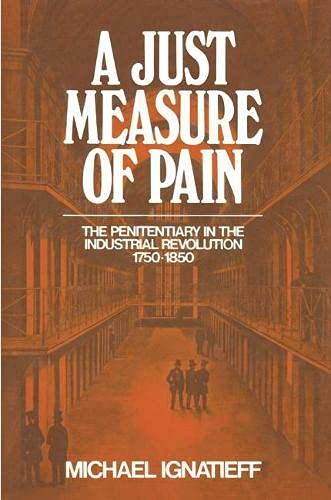 9780333258088: Just Measure of Pain (The critical criminology series)