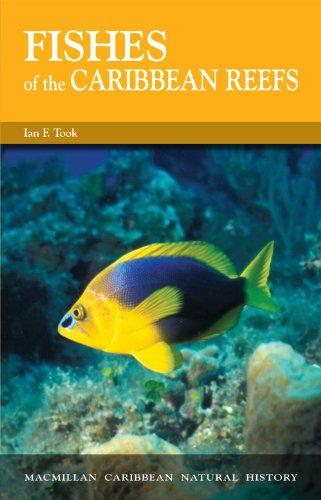 9780333269695: Fishes of the Caribbean Reefs (Macmillan Caribbean Natural History)