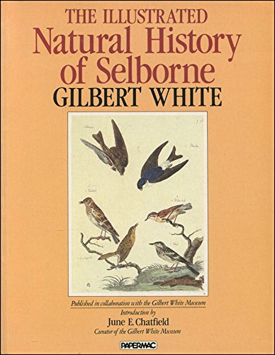 9780333353868: The Illustrated Natural History of Selborne