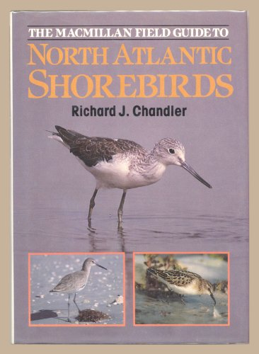 9780333458808: North Atlantic Shore Birds
