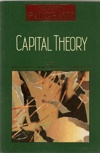 9780333495469: Capital Theory