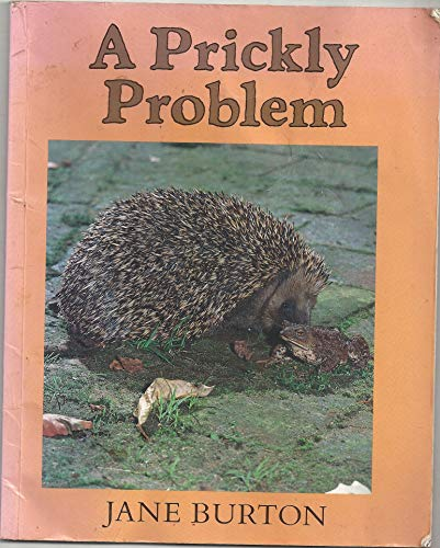 9780333592519: A Prickly Problem (Lost & Found)