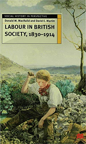 9780333731598: Labour in British Society 1830-1914