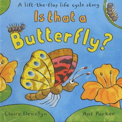 9780333763162: Lifecycles - Butterflies