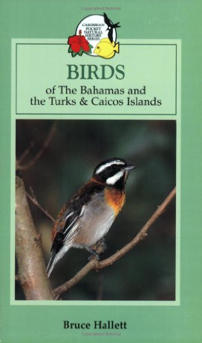 9780333937440: Birds of the Bahamas and the Turks and Caicos Islands (Caribbean Pocket Natural History)