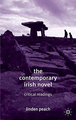 9780333948927: The Contemporary Irish Novel: Critical Readings