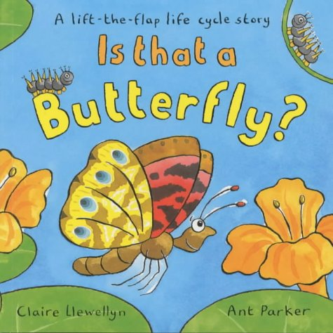 9780333962268: Is That a Butterfly?: A Lift-the-flap Life Cycle Story
