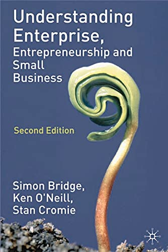 9780333964996: Understanding Enterprise, Entrepreneurship and Small Business