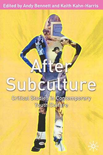 9780333977125: After Subculture: Critical Studies in Contemporary Youth Culture