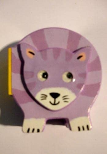 9780333998199: Chunky Pets:Cat (BB)