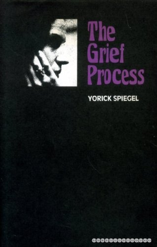 9780334005919: Grief Process