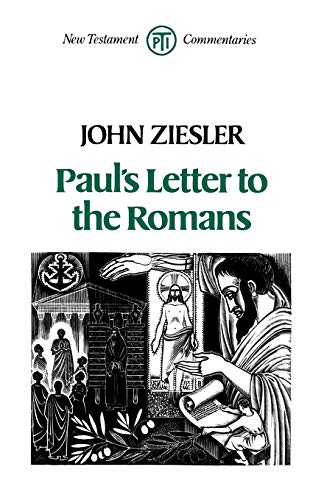 9780334022961: Paul's Letter to the Romans (New Testament commentaries)