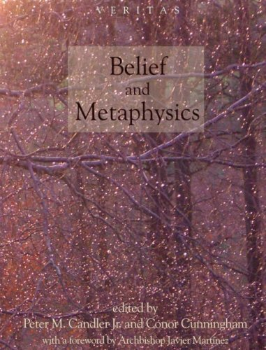 9780334041504: Belief and Metaphysics