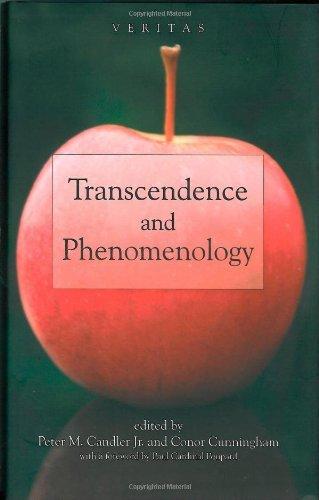 9780334041511: Transcendence and Phenomenology (Veritas)