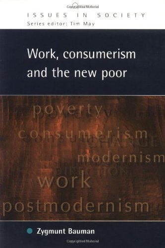 9780335201556: Work, Consumerism and the New Poor (Issues in Society)