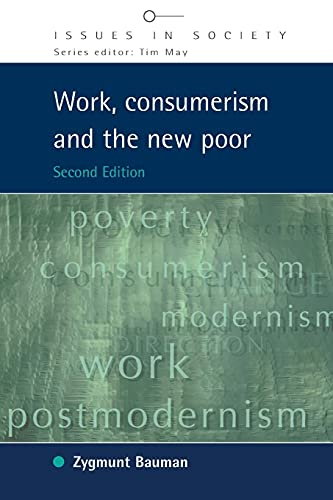 9780335215980: Work, Consumerism and the New Poor (Issues in Society)