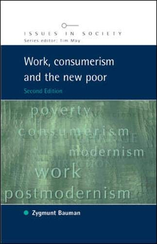 9780335215997: Work, Consumerism and the New Poor (Issues in Society)