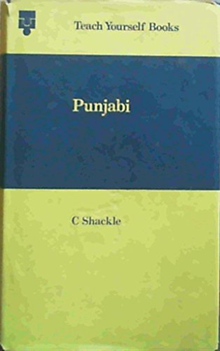 9780340124642: Punjabi (Teach Yourself)