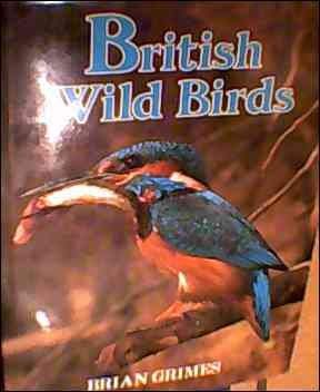 9780340279700: British Wild Birds