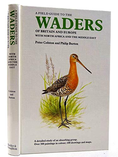 9780340399361: The Waders of Britain and Europe
