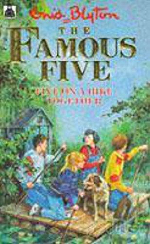Five on a Hike Together: Enid Blyton