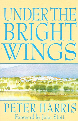 9780340580448: Under the Bright Wings