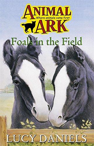 9780340699492: Animal Ark 28: Foals in the Field